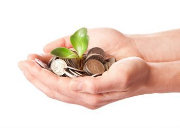 Hands holding coins and a plant